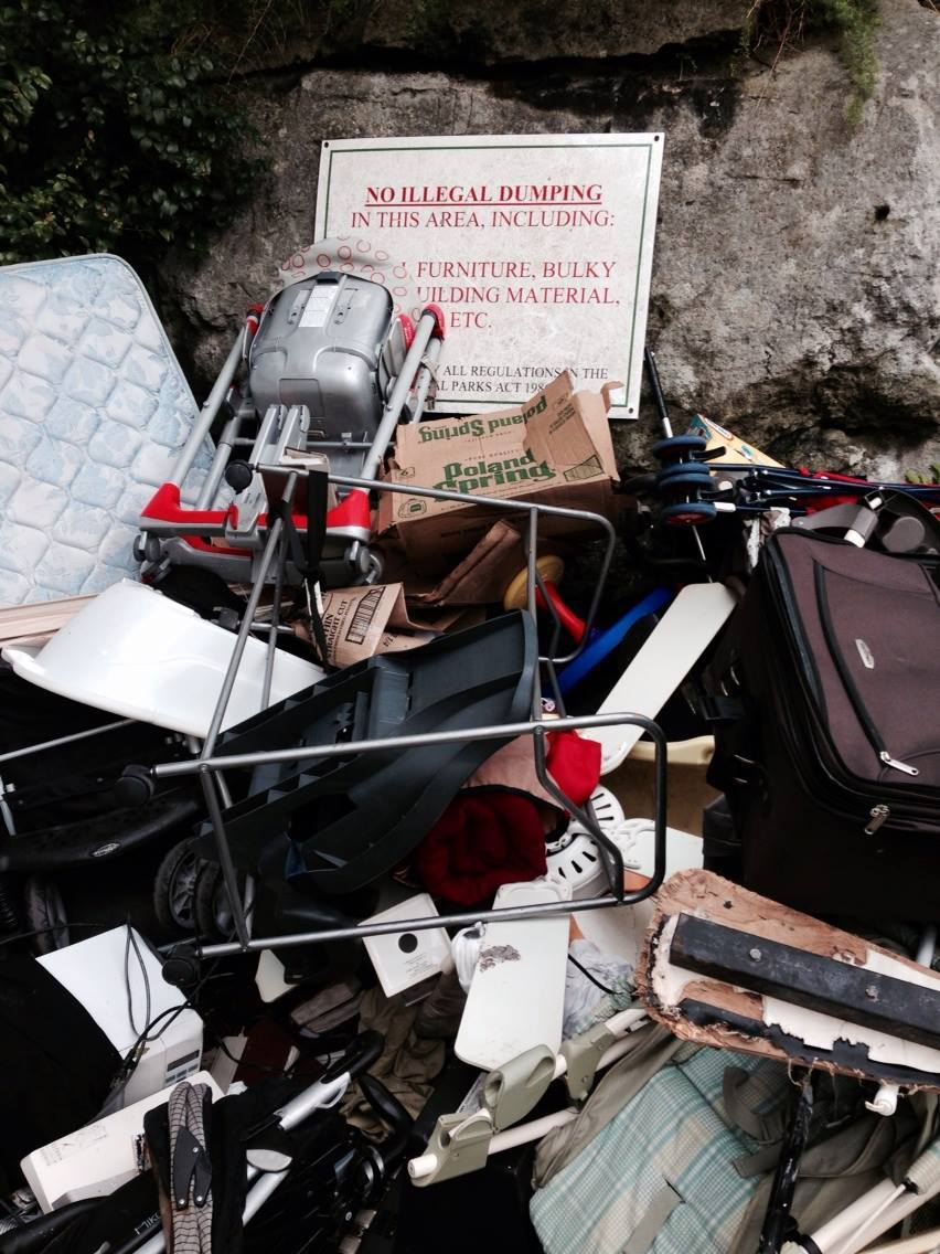 Illegal dumping on Bermuda's Railway Trail