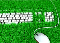Keyboard surrounded by grass